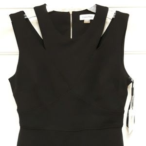 Calvin Klein Sz 4 Black Sleeveless Dress